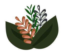 Leaves and branches illustration